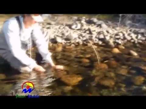 Febrero con secas en el Limay Superior