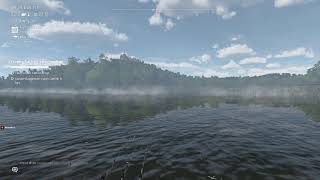 Fishing planet ловля сома на спиннинг