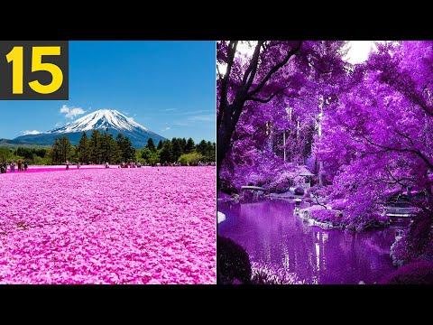 15 Most Gorgeous Garden Around the World