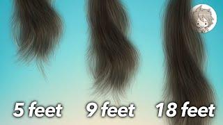 Why Each Person Has A Maximum Length For Hair