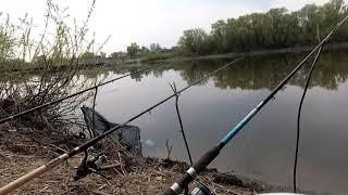 Рыбалка и отдых на пруду в перлевке