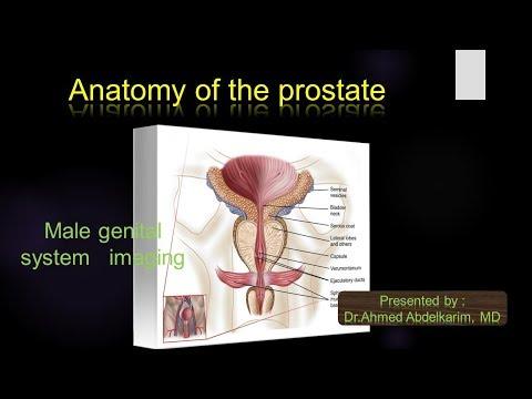 A végbél fájdalma prostatitis