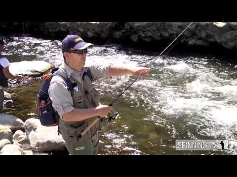 Stagno da pesca a uno zabolotya