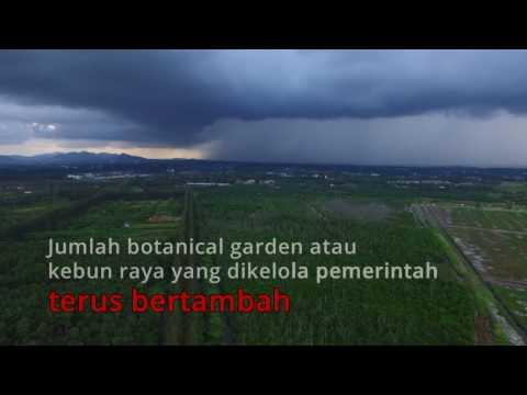 Rahasia di Balik Pesona Botanical Garden