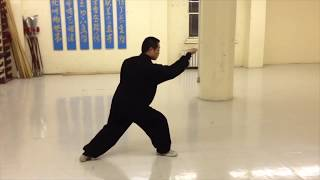 Xing Yi Quan (Hsing-I, 河北形意拳 ) 5 Elements Slow-Motion Demonstration
