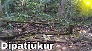 Makam Eyang Dipati Ukur (Adipati Wangsanata) Limbangan Garut