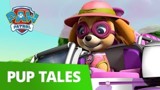 PAW Patrol | Pups and the Stinky Bubble Trouble | Rescue Episode | PAW Patrol Official & Friends
