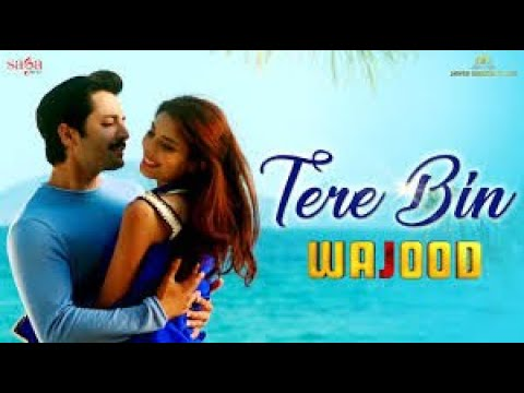 TERE BIN  Wajood Pakistani    Full Movie Latest Movie Danish  timaoor     full movie  2020
