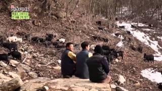[시골愛산다] 해발 500m, 흑염소와 사랑에 빠진 남자_채널A_신대동여지도 79회