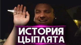 "ИСТОРИЯ ПРО ""ЦЫПЛЯТ"""