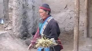 Tibetan Woman's life