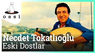 Necdet Tokatlıoğlu / Eski Dostlar