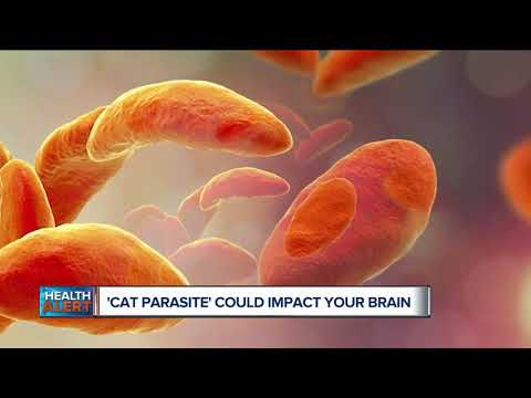 Antibodies sa mga parasito negatibong