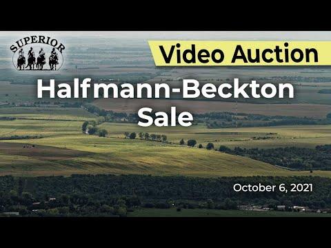 Halfmann-Beckton Sale