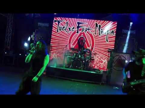 TWELVE FOOT NINJA - MOTHER SKY ( LIVE AT SILENCE FESTIVAL 2017 )