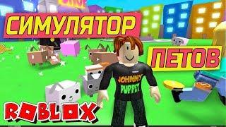 РОБЛОКС СИМУЛЯТОР ПИТОМЦЕВ САМЫЙ БЕДНЫЙ ИГРОК))! Roblox Pet Simulator
