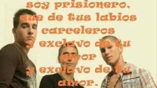 Fondo Flamenco - Rompecabezas