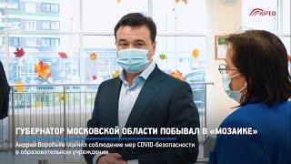 Губернатор Московской области побывал в «Мозаике»