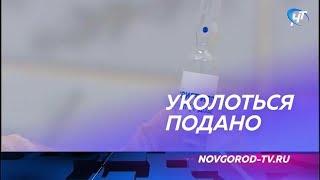 Новгородцев приглашают сделать прививку от гриппа