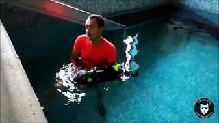 Hydrothérapie : Kira, paralytique.