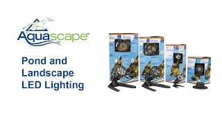 POND AND LANDSCAPE LIGHTING FROM AQUASCAPE
