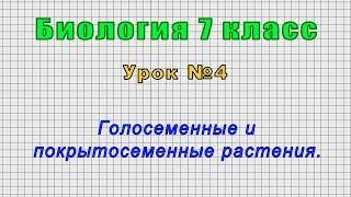 Биология 7 класс Урок 4