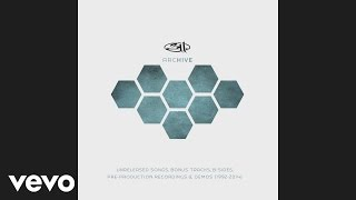 311 - Time is Precious (Evolver Sessions) (Audio)
