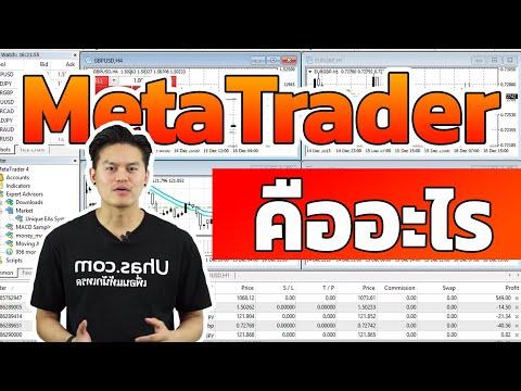 Opcionų prekybos priemokų skaičiuoklė
