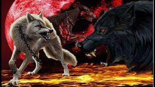Волки - Демоны / Собаки - Зомби. Клип. Над Вами.