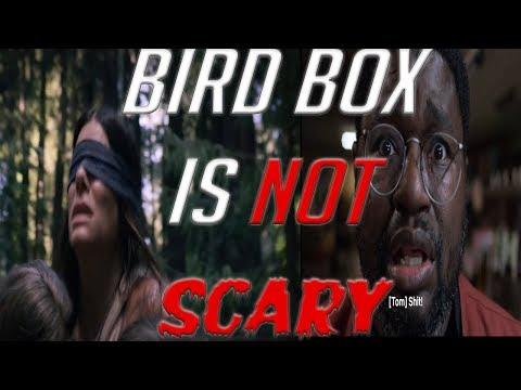 Bird Box Is Not Scary