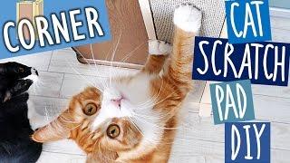 Haku gets a new scratch board | Cat Scratch Pad DIY