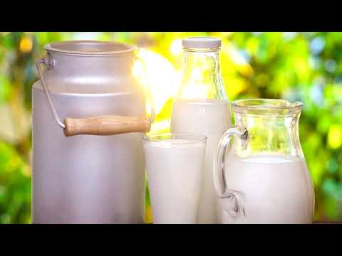 Почему дают молоко за вредность?