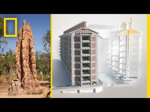 mp4 Home Design Natural Cooling, download Home Design Natural Cooling video klip Home Design Natural Cooling