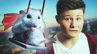 Flying Hamster (feat. Dner)