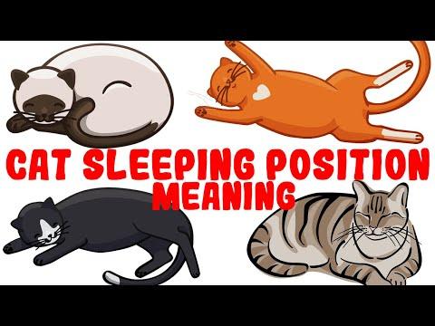 Kipsujen nukkuma-asennot