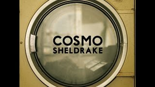 Cosmo Sheldrake - The Moss (Audio)