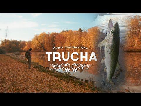 Pesca De 90 Toneladas De Pez Y Cómo Cocinar Truchas Sin Fuego - Curiosidades Checas - Mochileros