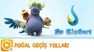 SU ELÇİLERİ / DOĞAL GEÇİŞ YOLLARI