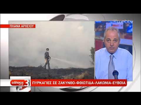 Πυρκαγιές σε Ζάκυνθο, Φθιώτιδα και Λακωνία | 06/09/2019 | ΕΡΤ
