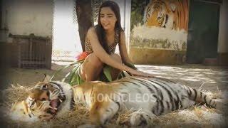Katy Perry - ROAR clip 15 años (Version OchoNucleos)