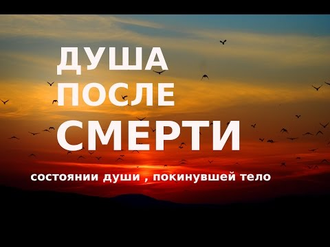 Жизнь после смерти О состоянии души, покинувшей тело Православный взгляд