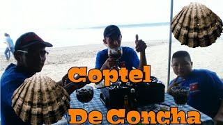 Coctel De Concha
