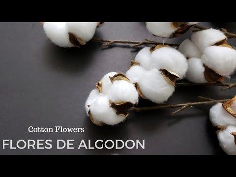 DIY FLORES DE ALGODON PARA DECORAR | DOLLAR TREE FARMHOUSE COTTON STEMS | Home Deko Channel