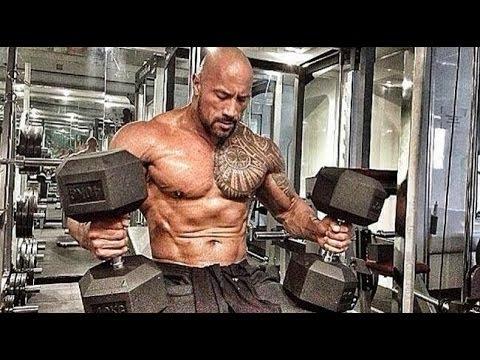 Lensemble des exercices sur tous les groupes des muscles avec la barre dans les conditions domestiqu