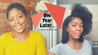 1 Year Post Big Chop | Natural Hair Journey | Blowout & Flat Iron for Beginners