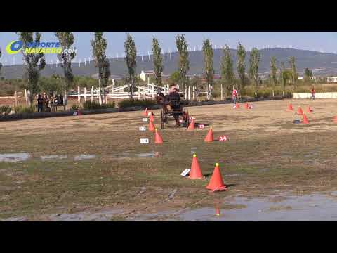 Campeonato navarro de enganches Olite 2017 2