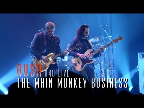The Main Monkey Business R40 Live