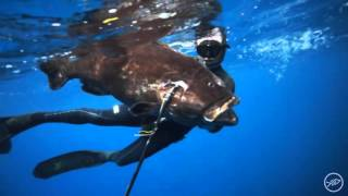 Existence, Spearfishing the Bahamas and Ascension
