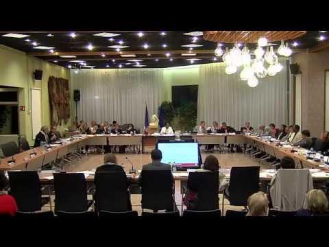 Conseil Municipal de Vaulx-en-Velin 28 septembre 2015