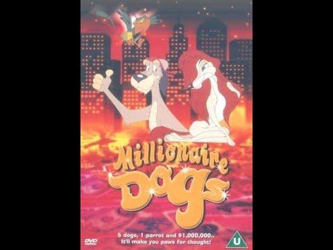 mp4 Millionaire Dog, download Millionaire Dog video klip Millionaire Dog